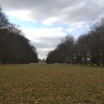 Houghton Hall, complete with picture postcard herd of white Fallow deer walking past